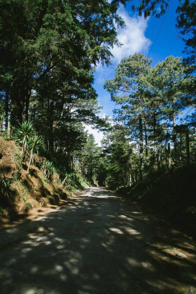 Miramundo散歩